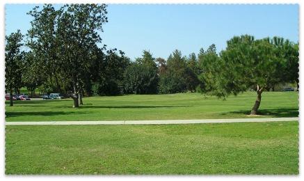 Woodward Park:Trees & Grass
