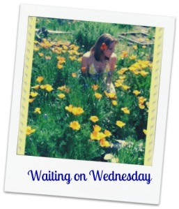 fiona-in-a-field-of-flowers-framed-text