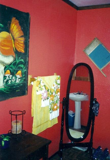 Bright reddish-orange bathroom