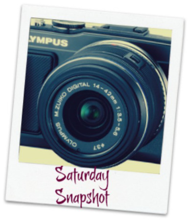 olympus-epl5-camera-0-logo