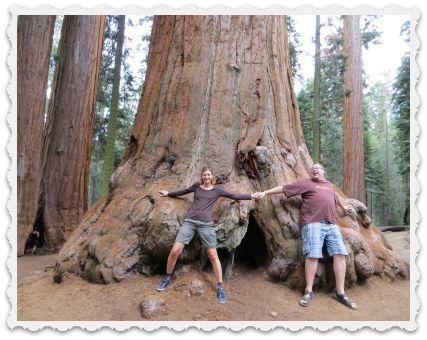 Gabi & Craig - tree huggers