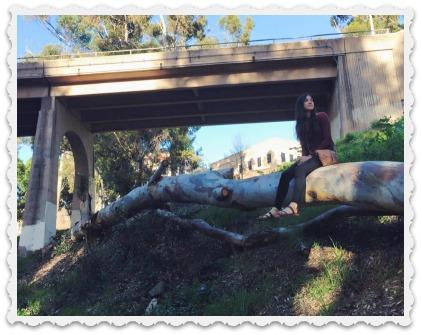 Aubrey's adventures